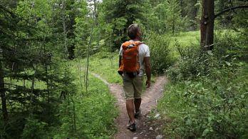 choosing-a-trail