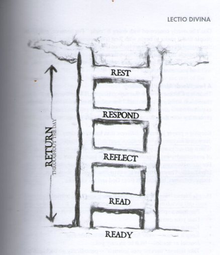 lectio-ladder