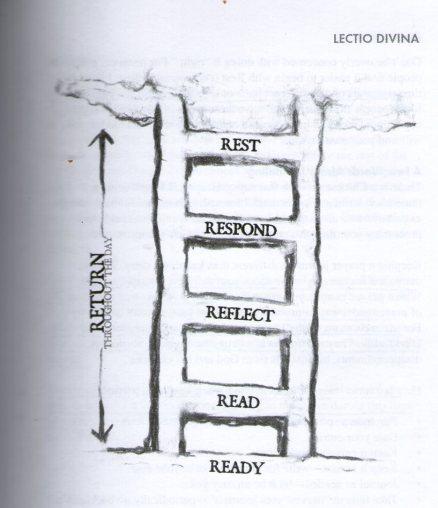 lectio-ladder